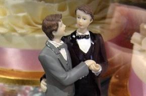 Россия запретит усыновлять детей однополым парам из Франции