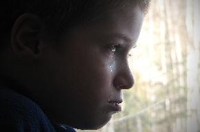 Петербургских родителей отправили на исправительные работы за издевательства над девятилетним сыном
