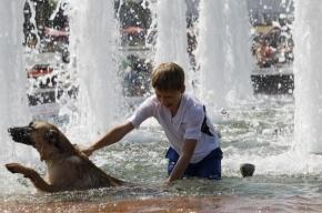 Синоптики рассказали, каким будет лето в Петербурге