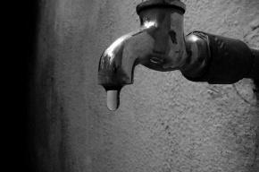 Петербуржцам разрешили пить горячую воду из-под крана