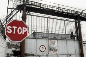 Депутаты Госдумы просят Минюст защитить зэков от досмотра прямой кишки