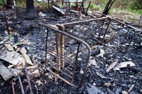 На пожарище под Петербургом нашли два тела