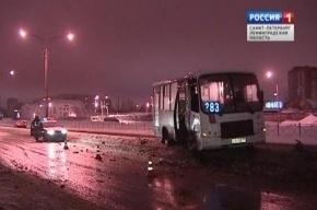 Полиция допрашивает водителя маршрутки, врезавшегося в столб в Петербурге