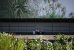Фоторепортаж: «Открытие Новой Голландии в 2013 году»