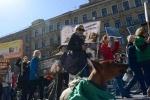 Фоторепортаж: «1 мая митинг Петербург »