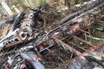 Фоторепортаж: «Самолет Ан-2 упал в Серове»