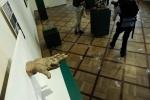 """Конкурс """"Борзой щенок"""" - проекты: Фоторепортаж"""