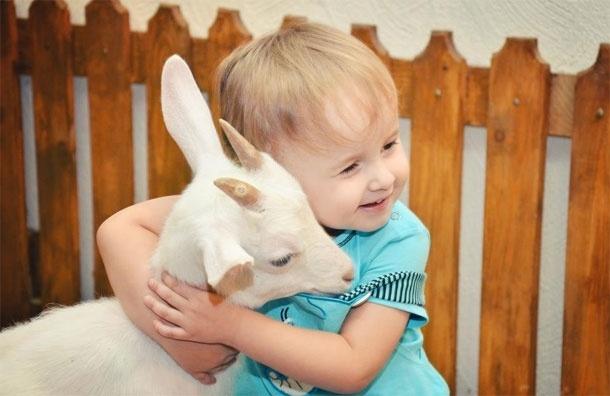 Контактный зоопарк «Жили у бабуси» приглашает на «обнимашки»