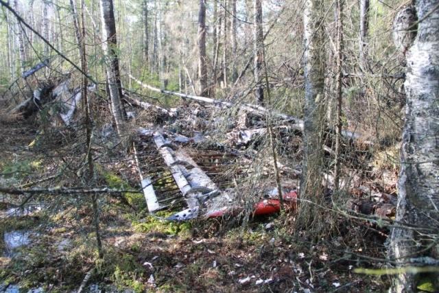 Самолет Ан-2 упал в Серове: Фото