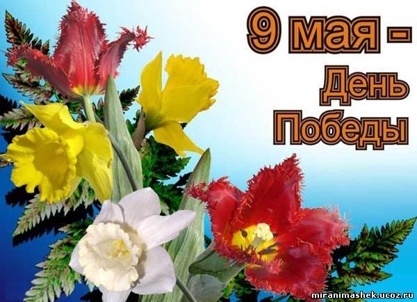 Поздравления с 9 мая: картинки, открытки: Фото