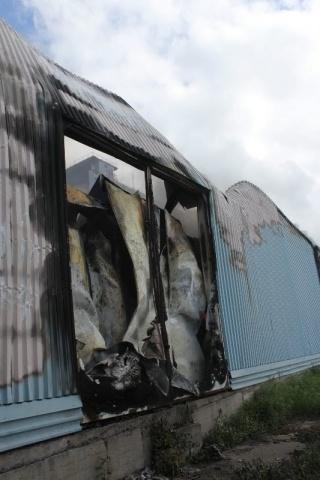 Пожар в Невском районе, Челиева: Фото