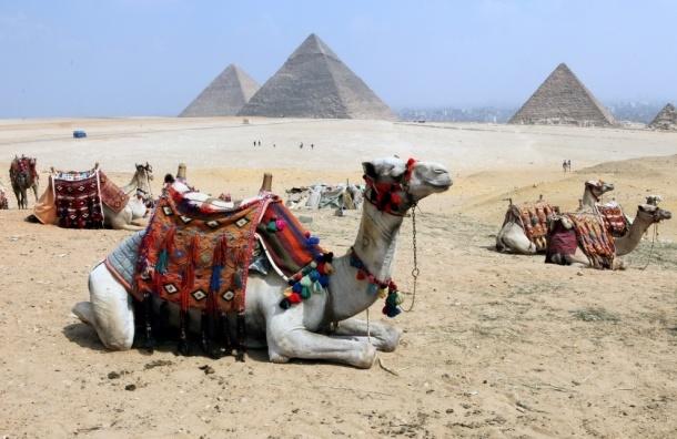 С 1 ноября туристические визы в Египет подорожают до 25$