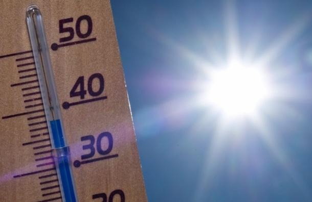 Как пережить жару и магнитные бури в мегаполисе? Советы врачей