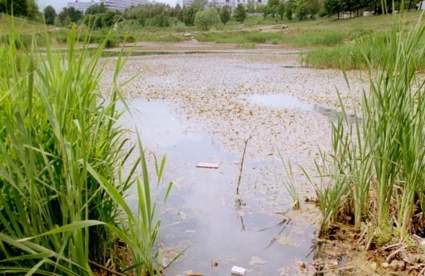 За сутки в водоемах Москвы утонули подросток и двое мужчин