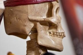 Петербуржец приобрел садовый участок и два скелета в придачу