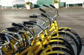 Возле трех станций метро Петербурга появились велопарковки