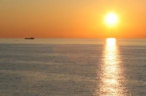 На берегу Финского залива нашли тело без ноги