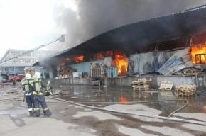 В Невском районе пока не могут потушить пожар на складе зятя Сердюкова