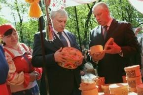 Новгородская область обиделась на Петербург из-за ярмарки, которую выгоняют с площади Островского