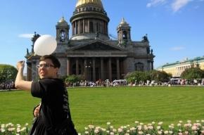 Петербург может попасть в книгу рекордов Гиннеса