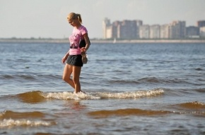 Петербуржцам пообещали теплое и солнечное лето