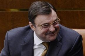 Долларовый миллиардер Андрей Гурьев уходит из Совета Федерации