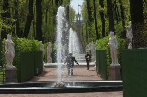 Вход в Летний сад пока останется бесплатным, заявили в Русском музее
