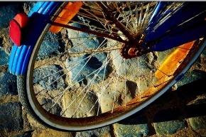 В Петербурге появится 400 бесплатных велопарковок