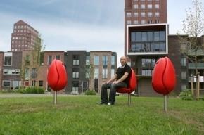 На Петроградке появились голландские стулья-тюльпаны