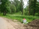 Мусор в Дворцовом лесопарке: Фоторепортаж