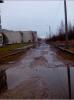 Лужи в Петергофе, Пунк СПБГУ: Фоторепортаж
