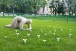 мих  сады : Фоторепортаж