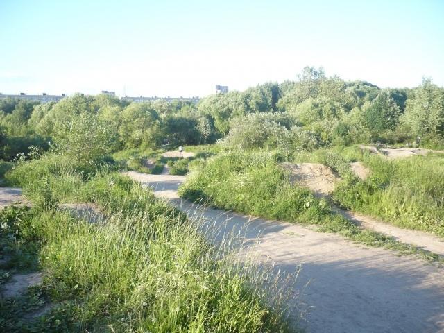 Мусор в Полежаевском парке: Фото
