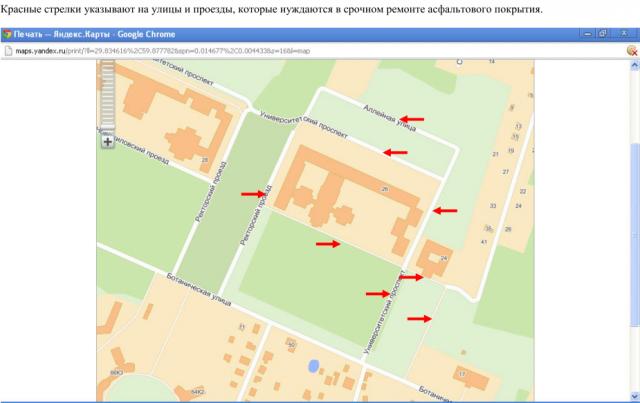 Лужи в Петергофе, Пунк СПБГУ: Фото