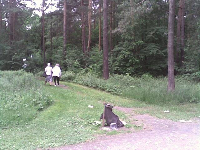 Мусор в Сосновском лесопарке: Фото