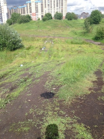 Мусор в Яблоновском лесопарке: Фото