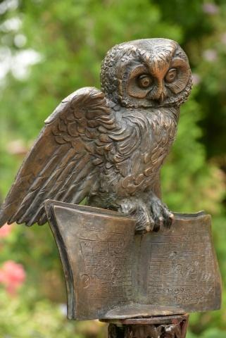 Памятник сове в Зоопарке: Фото