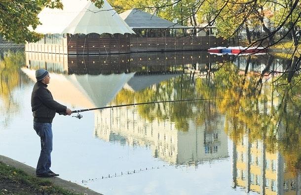 Можно ли ловить рыбу в прудах Москвы