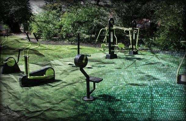 Спортивные площадки почти исчезли из петербургских дворов