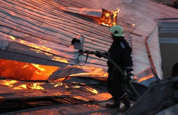 Пожар в пермском магазине пиротехники локализован