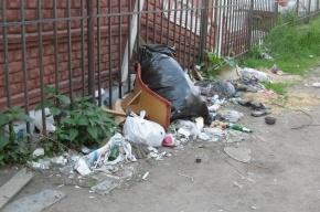 «Ничейная» помойка на улице Савушкина отравляет жизнь местным