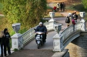 Пригороды Петербурга могут остаться без охраны ЮНЕСКО