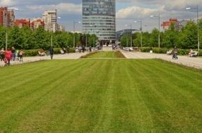 Вице-губернатора расстроили неработающие туалеты в парке 300-летия Петербурга