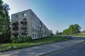 В Петербурге задержан ремонтник, подозреваемый в убийстве пожилой женщины