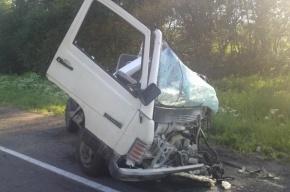 Разыскиваются очевидцы страшной аварии на Киевском шоссе