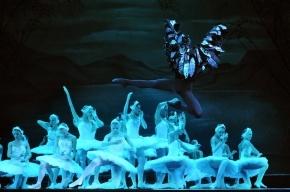 Мариинский театр проведет прямую 3D-трансляцию «Лебединого озера» на 50 стран