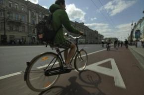 Депутат просит Полтавченко взять себе «велосипедного» советника