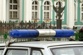 Пьяный посетитель Эрмитажа избил полицейского