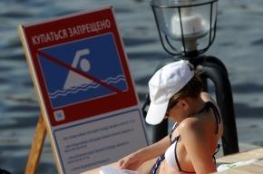 В Петербурге можно купаться только в одном озере