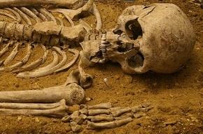 В Ленобласти возле жилого дома нашли несколько человеческих скелетов